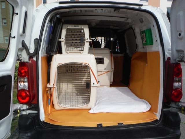 transport de votre animal taxi animalier vannes 56 animo services. Black Bedroom Furniture Sets. Home Design Ideas